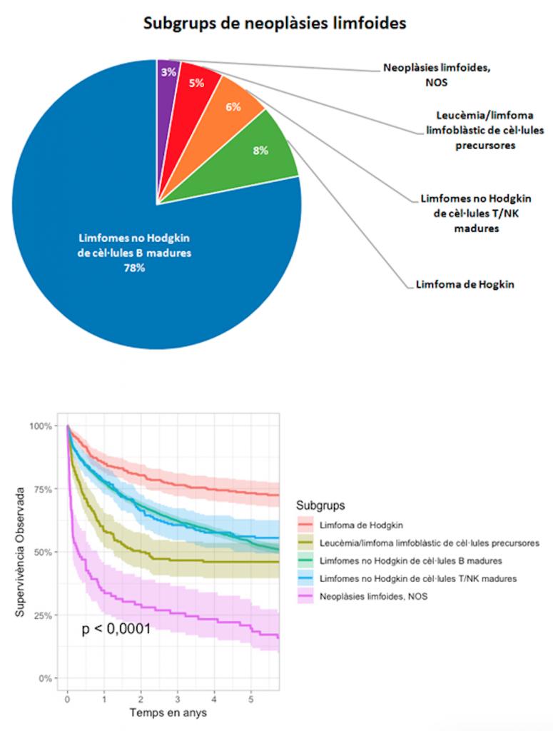 Estudi epidemiològic poblacional de la incidència, tendència i supervivència de les neoplàsies limfoides a la província de Girona durant un període de 20 anys (1996-2015)