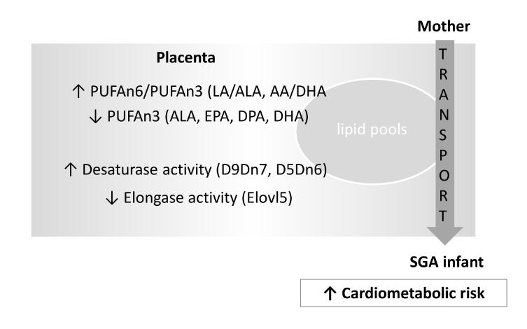 Comparació del perfil d'àcids grassos placentari en nens amb baix pes per l'edat gestacional i nens amb pes adequat