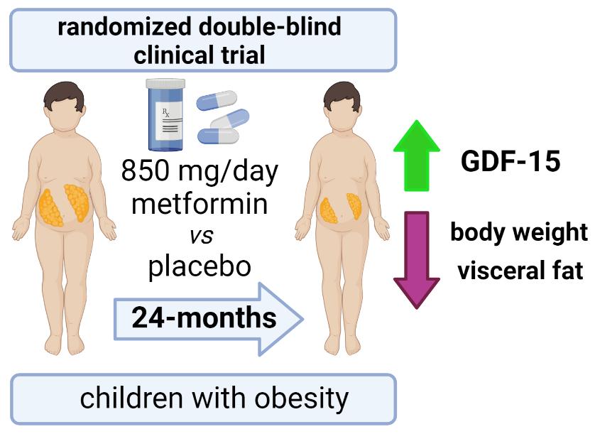 Estudio en niños con obesidad con tratamiento con metformina durante 24 meses: cambios en los niveles sanguíneos de GDF-15 y asociaciones con los cambios en el peso corporal y grasa visceral