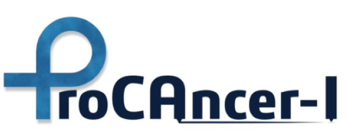 ProCAncer-I: a H2020-funded project aimed at developing a platform to support clinical decision making in prostate cancer through medical imaging and AI